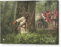 Forest Fight Acrylic Print by Randy Steele