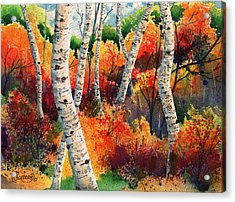 Forest In Color Acrylic Print by Timithy L Gordon