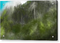 Forest Landscape 10-31-09 Acrylic Print by David Lane