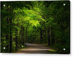 Forest Path Acrylic Print by Parker Cunningham