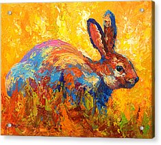 Forest Rabbit II Acrylic Print by Marion Rose