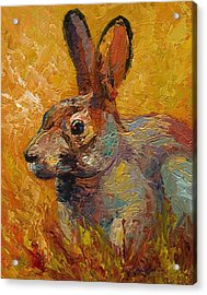 Forest Rabbit IIi Acrylic Print by Marion Rose