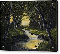 Forest Stream Acrylic Print by John Reid
