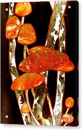 Forest Treasures A Collage Depicting Woodland Mushrooms Acrylic Print by Phil Albone