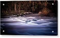 Forever Free Acrylic Print by Marvin Spates