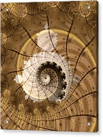 Fossil Acrylic Print by David April
