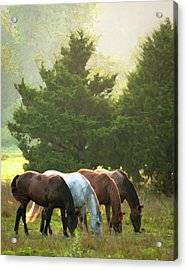 Four Of A Kind Acrylic Print by Ron  McGinnis