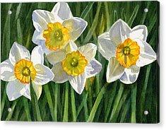 Four Small Daffodils Acrylic Print by Sharon Freeman
