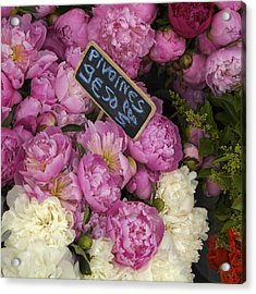 France, Paris Peonies Flowers Acrylic Print by Keenpress