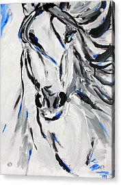Free Spirit Horse - Abstract Horse Art By Valentina Miletic Acrylic Print by Valentina Miletic