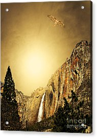 Free To Soar The Boundless Sky . Portrait Cut Acrylic Print by Wingsdomain Art and Photography