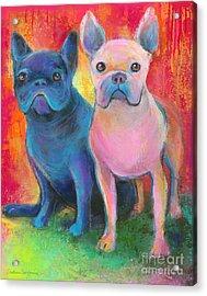 French Bulldog Dogs White And Black Painting Acrylic Print by Svetlana Novikova