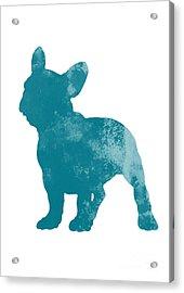 French Bulldog Fine Art Illustration Acrylic Print by Joanna Szmerdt