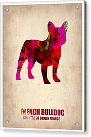 French Bulldog Poster Acrylic Print by Naxart Studio
