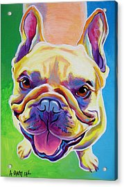 Frenchie - Ernest Acrylic Print by Alicia VanNoy Call