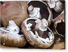 Fresh Portabella Mushrooms Acrylic Print by Teri Virbickis