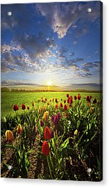 From The Very First Moment Acrylic Print by Phil Koch