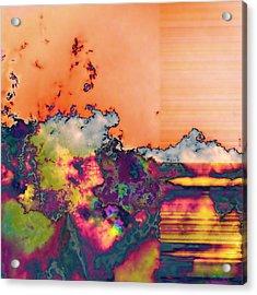 Fruit Salad Acrylic Print by Wendy J St Christopher