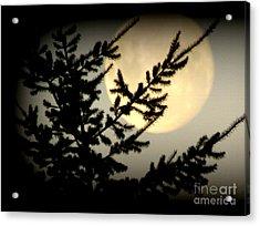 Full Moon Acrylic Print by Joyce Woodhouse