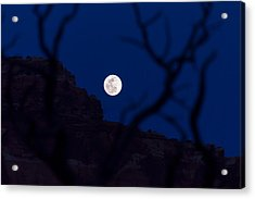 Full Moon Rising Over Desert Acrylic Print by Michael J Bauer