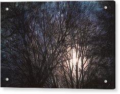 Full Moon Rising Acrylic Print by Scott Norris