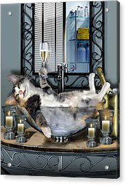 Funny Pet Print With A Tipsy Kitty  Acrylic Print by Regina Femrite
