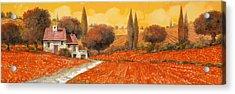 fuoco di Toscana Acrylic Print by Guido Borelli
