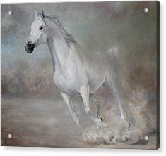 Gallop Acrylic Print by Vali Irina Ciobanu