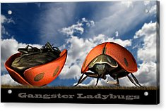 Gangster Ladybugs Nature Gone Mad Acrylic Print by Bob Orsillo