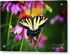 Garden Jewelry Acrylic Print by Lois Bryan