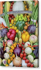 Garden Produce Acrylic Print by Tim Gainey