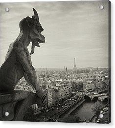Gargoyle Of Notre Dame Acrylic Print by Zeb Andrews