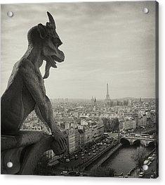 Gargoyle Of Notre Dame Acrylic Print by Zeb Andrews