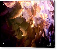 Gathering Storm Clouds Acrylic Print by Barbara Drake