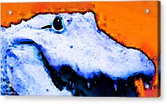 Gator Art - Swampy Acrylic Print by Sharon Cummings
