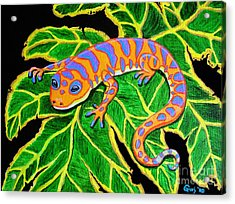 Gecko Hanging On Acrylic Print by Nick Gustafson
