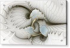 Gentle Hints Acrylic Print by Karin Kuhlmann