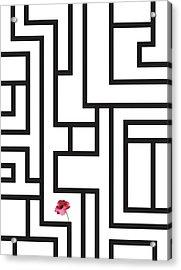 Geometric Lab Flower Acrylic Print by Francisco Valle