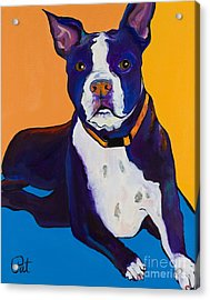Georgie Acrylic Print by Pat Saunders-White