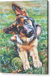 German Shepherd Pup With Ball Acrylic Print by Lee Ann Shepard