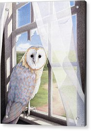 Ghost In The Attic Acrylic Print by Amy S Turner