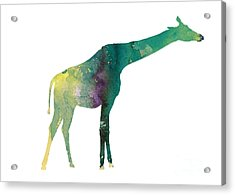 Giraffe Colorful Watercolor Painting Acrylic Print by Joanna Szmerdt