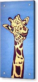 Giraffe Acrylic Print by Darren Stein