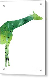 Giraffe Drawing Watercolor Art Print Acrylic Print by Joanna Szmerdt