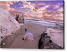 Giving And Taking Acrylic Print by Betsy Knapp