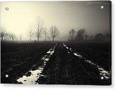 Gloomily Morning Acrylic Print by Mario Pejakovic