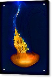 Glorious Recluse Acrylic Print by Wendy J St Christopher