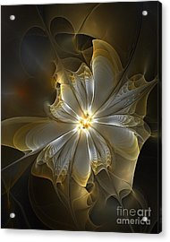 Glowing In Silver And Gold Acrylic Print by Amanda Moore