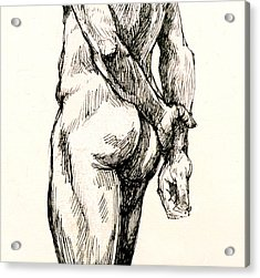 Gluteus Maximus Acrylic Print by Roz McQuillan