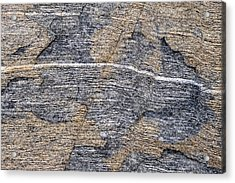 Gneiss - Fort Foster - Maine Acrylic Print by Steven Ralser